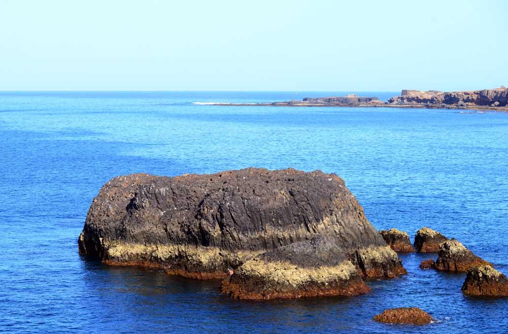 El roque Matavinos se convertirá en refugio para los charranes comunes en la bahía de El Confital