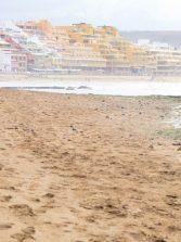 Y la arena volvió a tapar las piedras de Los Lisos