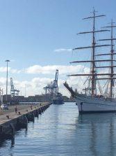 El Puerto de La Luz muestra su potencial económico y social con visitas guiadas al público en general