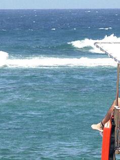 El SUC recuerda cómo proteger nuestra salud de los principales riesgos del verano