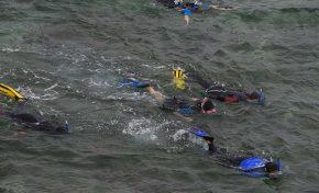 Ciudad de Mar sortea entre sus seguidores de Facebook rutas en kayak y experiencias de snorkel en Las Canteras