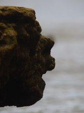 El rostro de Los Lisos