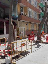 Palmeras por laureles de indias en la calle Pedro del Castillo Westerling