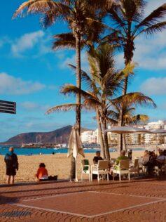 La Sociedad Española de Epidemiología pide que no se fume en las playas y terrazas para evitar contagios