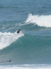 """El código del surfing """" la comunicación en el agua"""""""