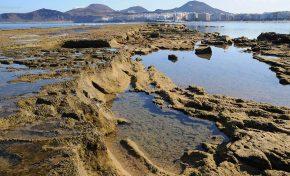Un estudio encargado por Ciudad de Mar determina que la integridad de La Barra será fundamental para controlar la subida del nivel del mar en Las Canteras