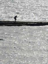 El nuevo reglamento prohibirá pescar y mariscar en la Barra