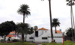 La Casa del Turismo del parque Santa Catalina acogerá una muestra de flora autóctona canaria