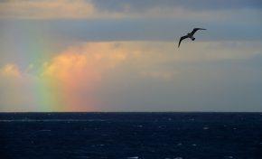 Un arcoíris emerge en el horizonte