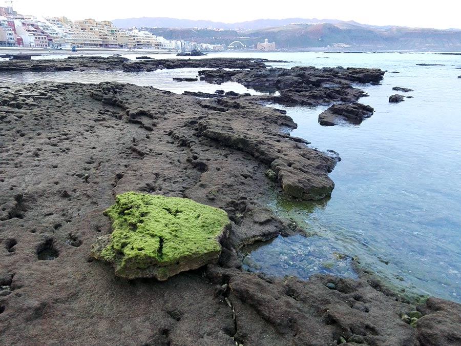 Un trozo de roca que ahora es piedra