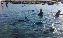 Por una actividad sostenible de las empresas turísticas de snorkel