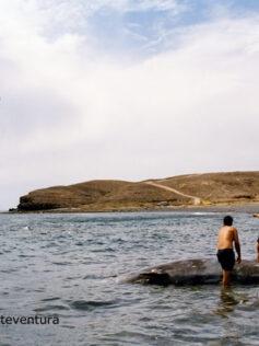 La ULPGC lidera una referencia mundial para la conservación de cetáceos frente a fuentes acústicas