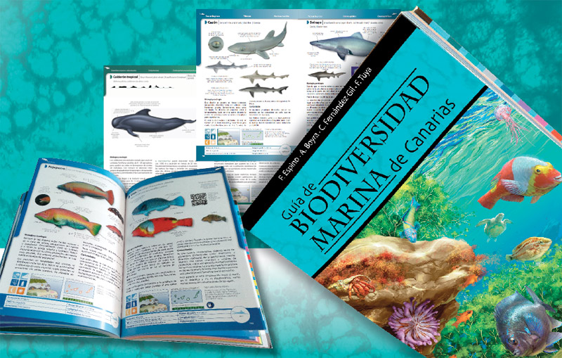 Sale a la venta la nueva guía sobre la biodiversidad marina de Canarias