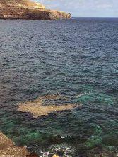 Las Canteras necesita una embarcación para limpiar en el mar