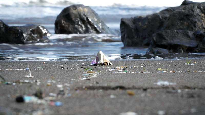 La bahía de El Confital tiene la mayor concentración de microplásticos de toda la Macaronesia