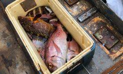 David y Angelito llegan con la pesca a La Puntilla