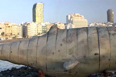 El canal ARTE emite un amplio reportaje sobre el rodaje de Moby Dick en Las Canteras