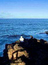 Pescando frente al Roque Morán