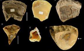 Los neandertales buceaban varios metros para recoger conchas
