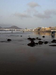 La Cicer a marea vacía