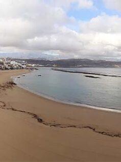 ¿ Cómo será la vuelta a la playa después del confinamiento ?
