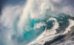 El Océano es el corazón del Planeta por Teresa Iturriaga