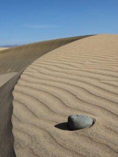 ¿Se han recuperado las dunas de Maspalomas durante el confinamiento?