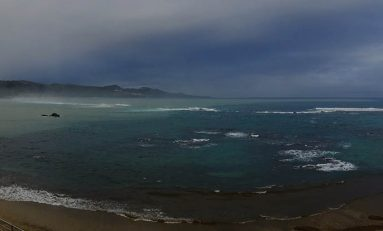 Mar marrón