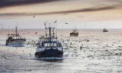 La pesca podría aliviar una emergencia alimentaria mundial en casos extremos