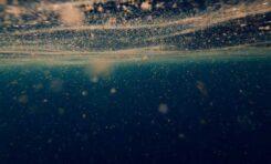 Virus marinos: los diminutos asesinos de microbios que orquestan la vida en el océano