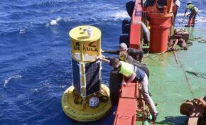 Investigadores de las universidades canarias fondean una boya para monitorizar los sonidos submarinos y el nivel de CO2