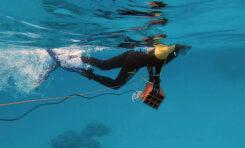 La contaminación acústica perturba la vida en los océanos
