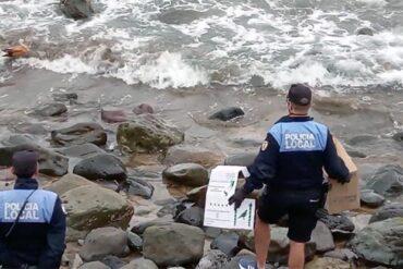 """La policía local """"rescata"""" las crías de un tarro canelo que apareció en la zona de Los Muellitos"""