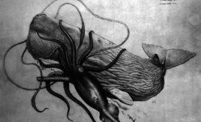 Ámbar gris: la caca de cachalote que vale su peso en oro
