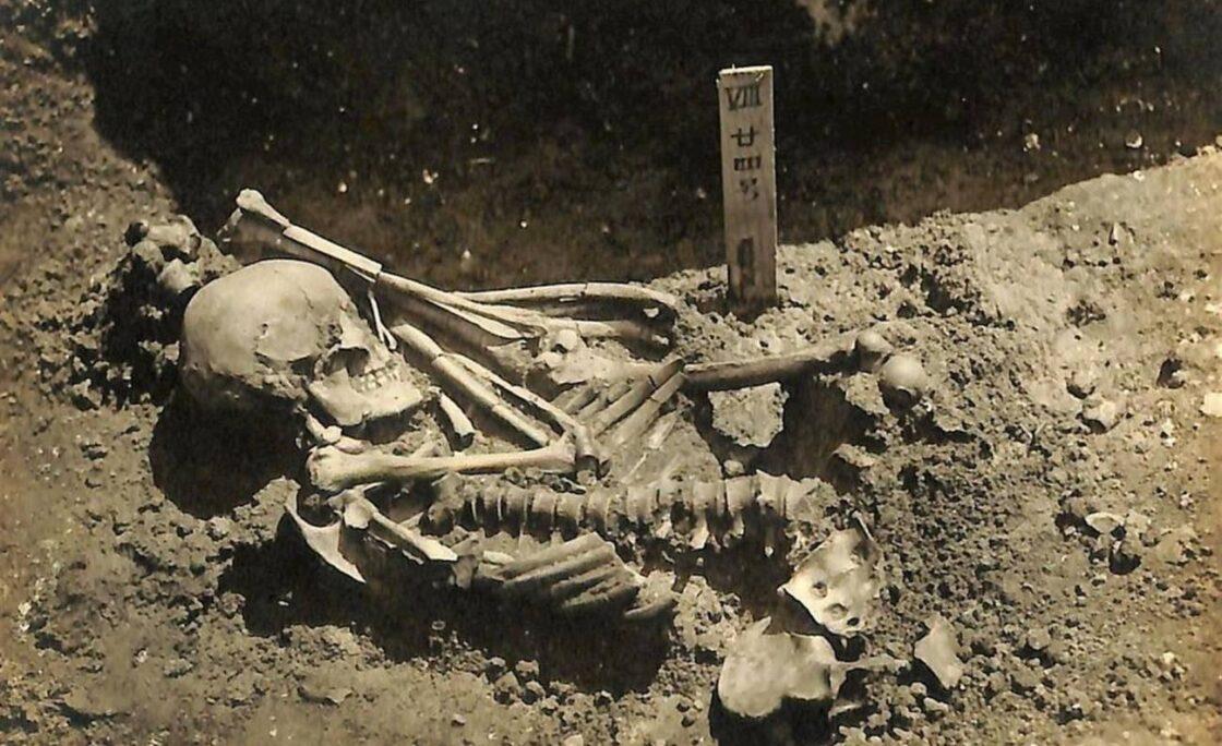La primera víctima conocida de un tiburón es un hombre muerto hace 3.000 años
