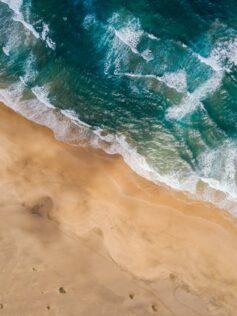 ¿Habrá partes del océano que queden desiertas por culpa del cambio climático?